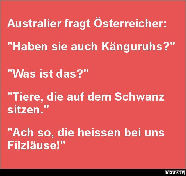 Australier fragt Österreicher.. | Lustige Bilder, Sprüche, Witze, echt lustig
