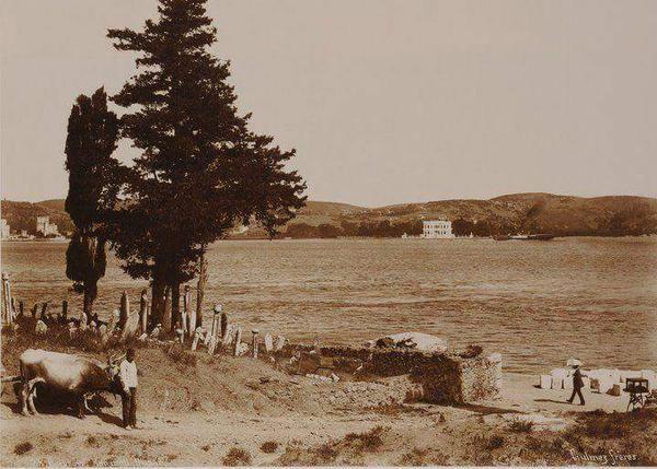 Aşiyan Mezarlığı F: Freres (1900'ler) #istanlook #birzamanlar