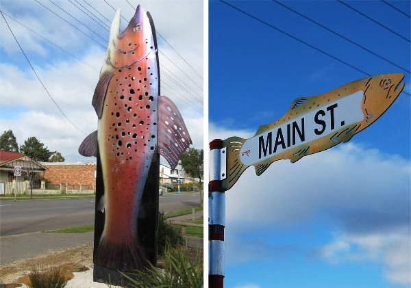 Cressy, home of the annual Tasmanian Trout Expo. Article and photo by Carol Haberle for www.think-tasmania.com