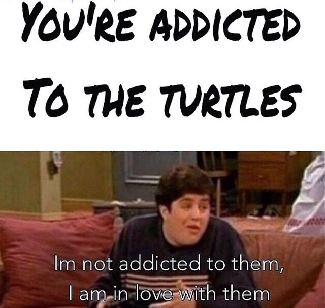 That's me with the New TMNT movie. I think all the Turtles are HOT and CUTE !! Mikey is a dork though,,, but still cute!!!!