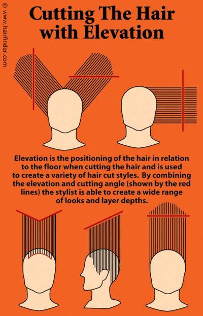 70 Best Diagram Haircut Images On Pinterest Hair Cut