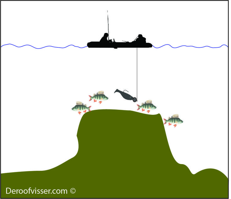 Baars vissen op groot water bij zogenaamde baarsbergen. Als je deze hebt gevonden kan je er heel goed baars vissen. Voor meer tips en de beste artikelen voor het vissen op baars bezoek je onze website https://www.deroofvisser.com/