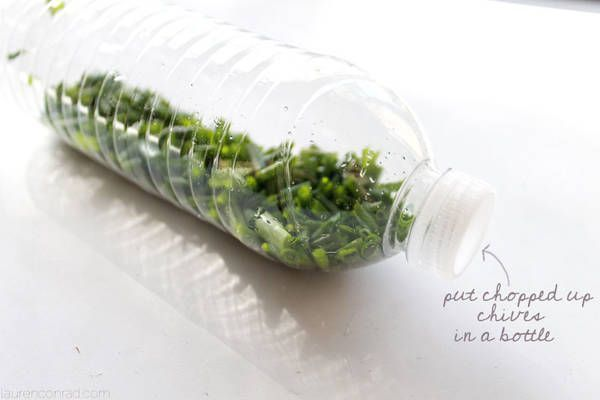 Chop up your chives and keep them in an old water bottle for extended freshness