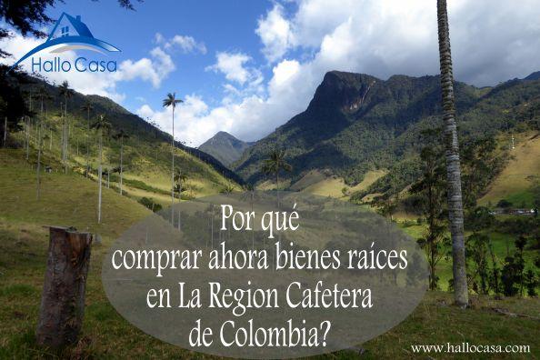 Una entrevista sobre posibilidades de inversion y turismo ecologico en Pereria y Colombia.