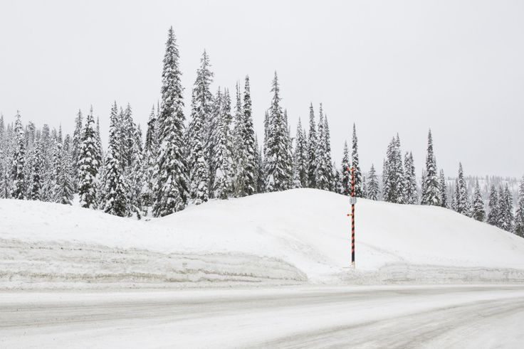 A photographic print by Elizabeth Bull for One Fine Print. #Forest #Snow #Grey #White #Green #Mountains #Snow #Trees #Landscape #Print #Art #Canada #Horizontal #Snowroad #Signal