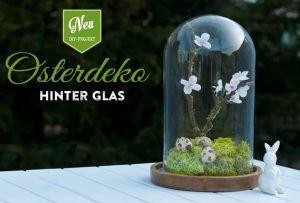 DIY: hübsche Osterdeko unter einer Glasglocke mit Kirschblüten aus Krepppapier. Die Schritt-für-Schritt Anleitung mit Materialliste findet Ihr auf www.deko-kitchen.de
