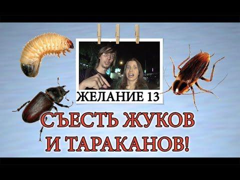 Экзотическая еда на Самуи - Съесть жуков и тараканов - желание 13