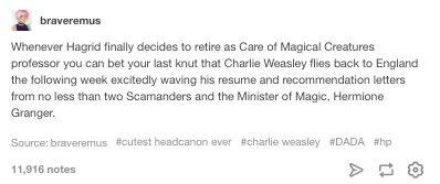 *head of Magical Law Department, since I think being Minister doesn't fit Hermione