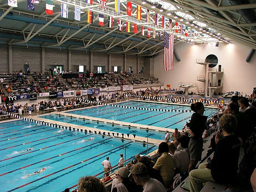 10 images about diveseattle springboard diving for all - Public swimming pools greensboro nc ...