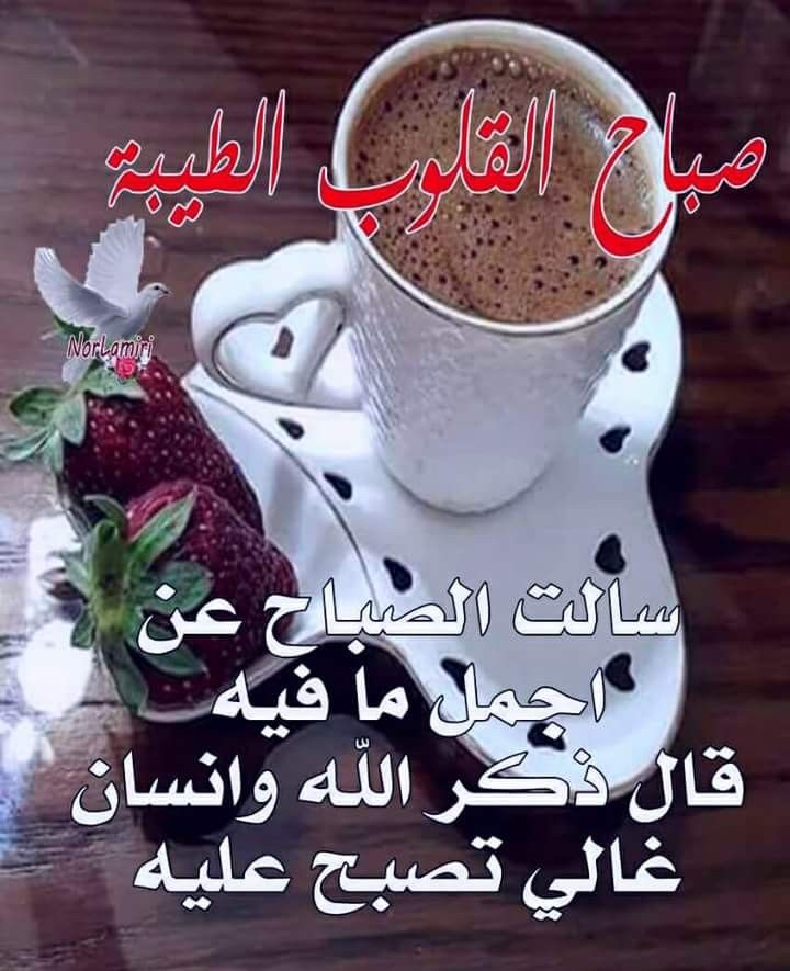 Pin By Nebras Al Zou Ebi On الصباح والمساء Glassware Tableware Diy And Crafts