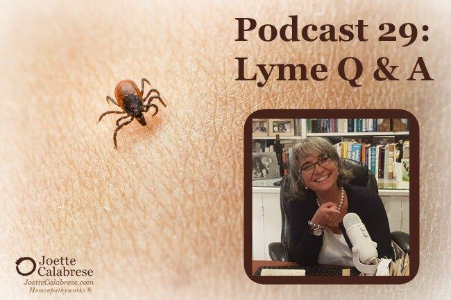 Podcast 29-Lyme Q&A Answers to questions I have been asked about Lyme disease
