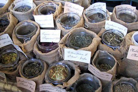 Coltivare le piante aromatiche: alcuni trucchi del mestiere e facili regole per la conservazione - Giardinaggio Piante e Fiori