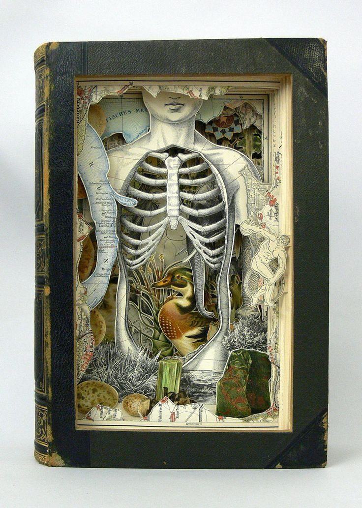 Anatomy, Antlers Nomadic Gallery, 2 Park St, 11-7 daily, extended until 14th Aug.