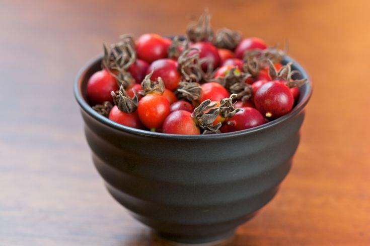 Отвары и настои плодов шиповника являются достаточно распространенными напитками, используемыми при профилактике и лечении самых разнообразных заболеваний.