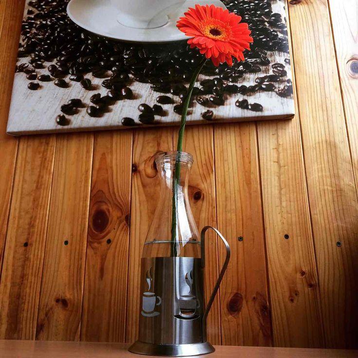 Кофе может радовать не только своим вкусом и ароматом, но и красотой. Кофейные зерна - один из материалов для декорирования. Я, кстати, им занималась, делала кофейные деревья и кофейные фоторамки, все это есть в блоге.  Кроме того, есть просто кофейная тематика в декоре, те же кофейные деревья (живые), очень красивые горшечные растения, здесьhttps://tsvetydoma.ru/komnatnyie-rasteniya/dekorativno-listvennyie-rasteniya/kofeynoe-derevo.htmlможно узнать, как вырастить ...
