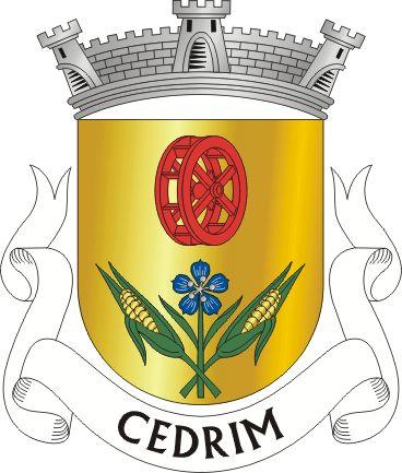 SVV-cedrim