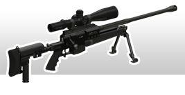 Fusils de précision - PGM Précision