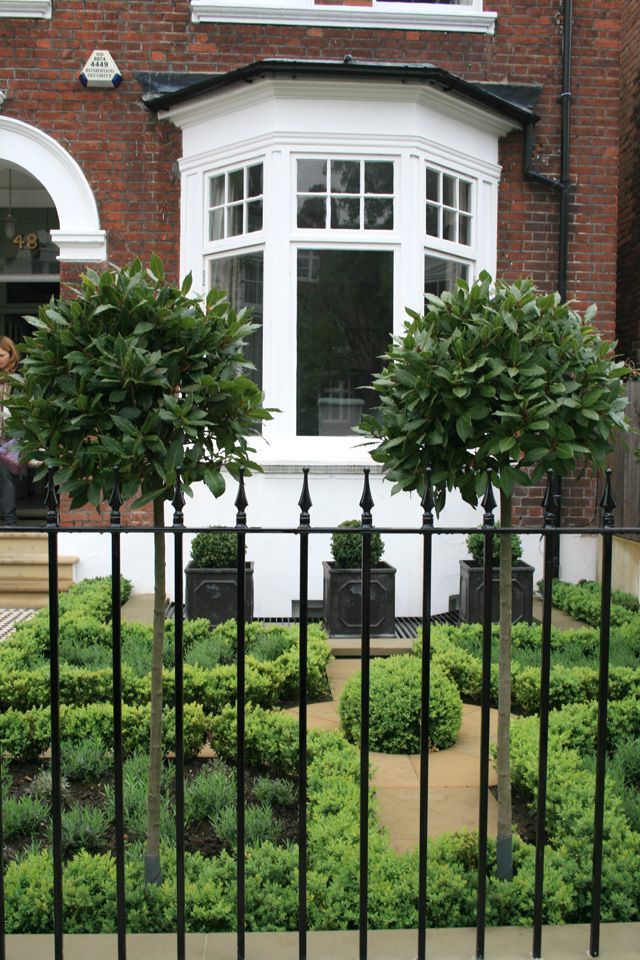 front garden for a victorian terrace house black railings and sweet bay ball trees