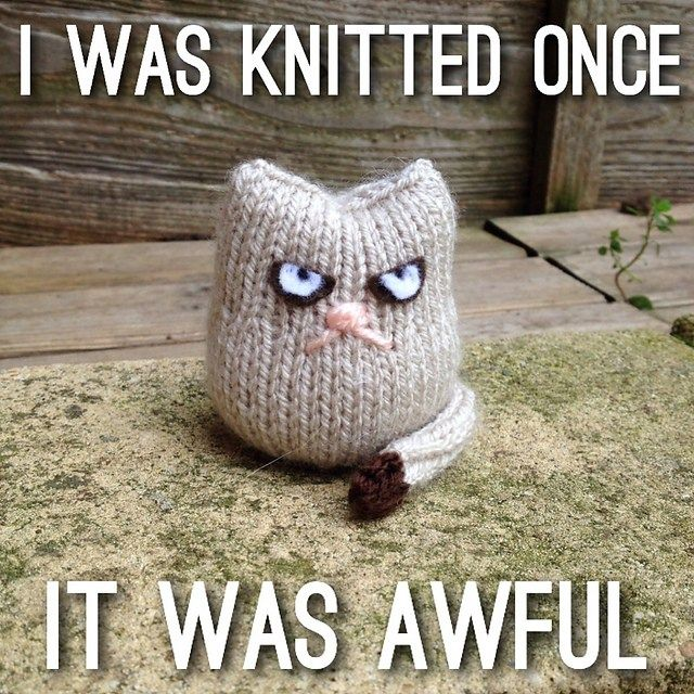 Cat Knitting Meme : Best images about knitting funny on pinterest