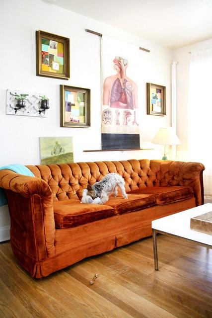 Best 20+ Orange sofa ideas on Pinterest | Orange sofa design ...
