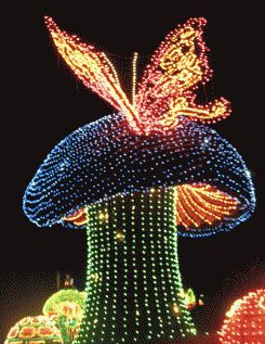 Disney Electrical Parade Pictures
