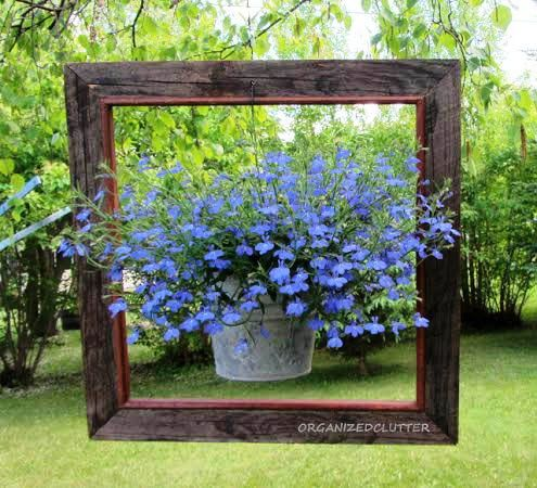 Amazing uses for old picture frames in the garden Carlene's brilliant idea to 'frame' a hanging plant, was a hit on her garden blog.