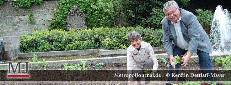 (BT) Kostenloses Gemüse für die Bayreuther zum selber ernten - http://metropoljournal.de/?p=9110