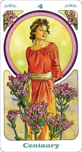 Bach Flower Inspirational Cards: Lo Scarabeo: 9780738721842: Amazon.com: Books