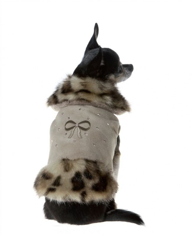 Trilly tutti Brilli Clodia | Winterkleding | Dog & Catwalk | Hondenkleding, hondentassen, petsling oa merken Puppy Angel, Puppia, Bobby, halsbanden, manden.