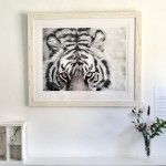 Tiger   Wildlife Photography by Clare FitzGerald