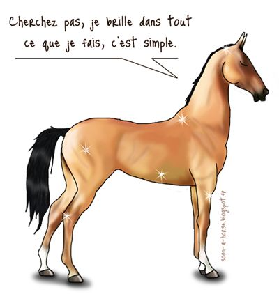 17 best images about citations chevaux on pinterest - Quel est le nom le plus porte au monde ...
