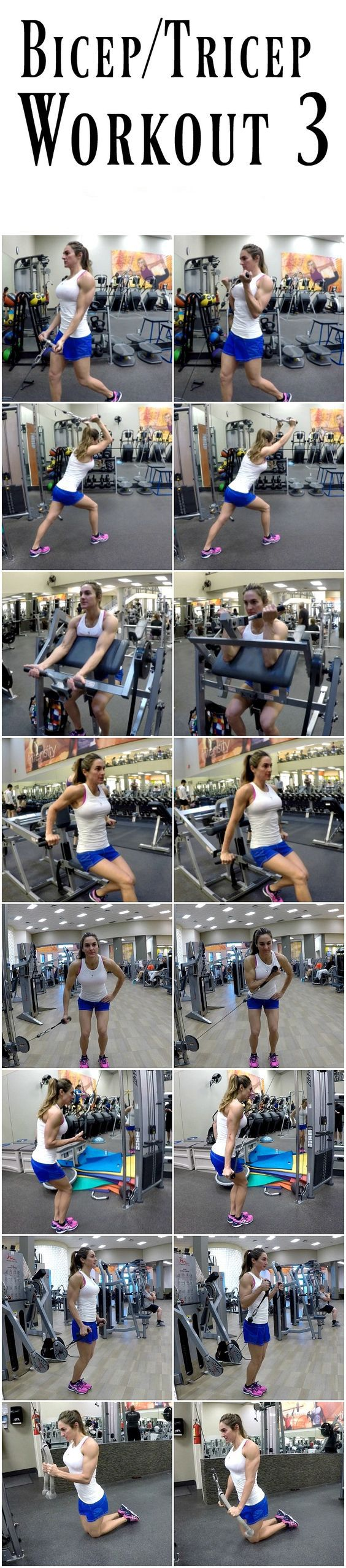Bis and Tris Workout |
