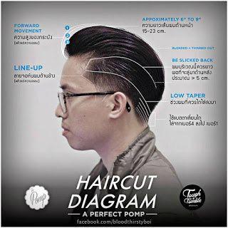 a-perfect-pomp-haircut-diagram | Kaycee Enerva | Flickr
