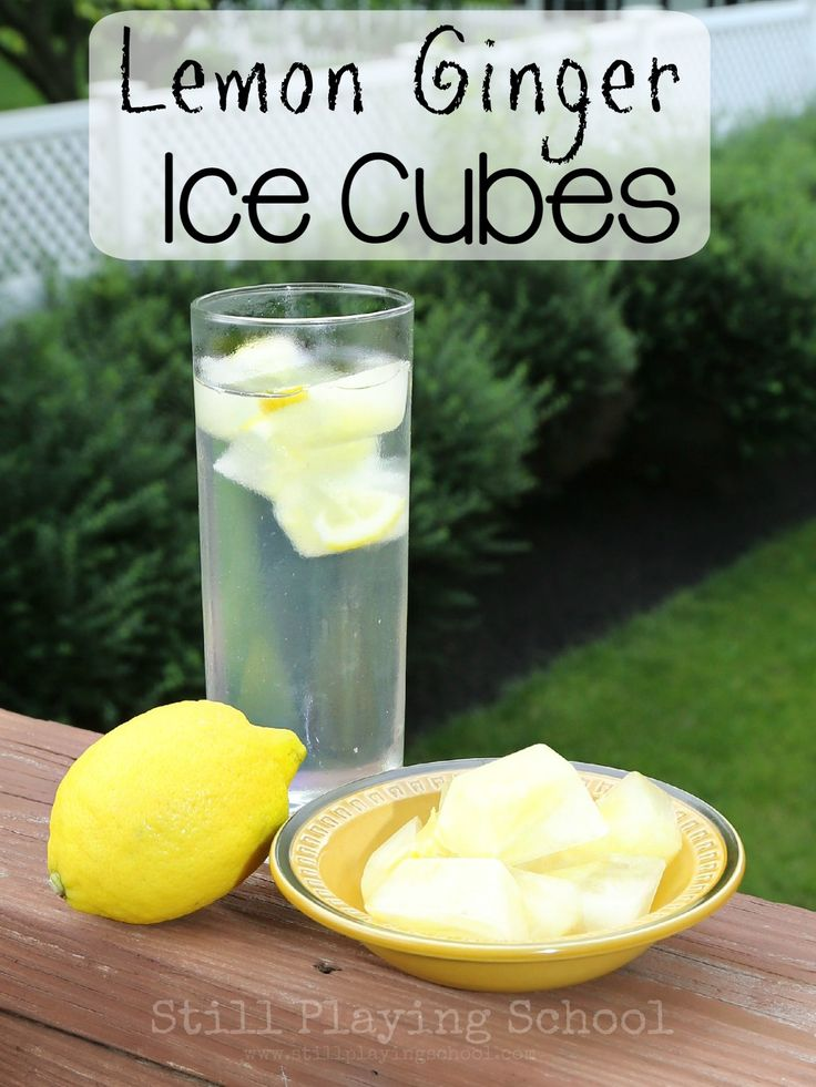 Lemon Ginger Ice Cubes for Refreshing Infused Water with Health Benefits from Still Playing School