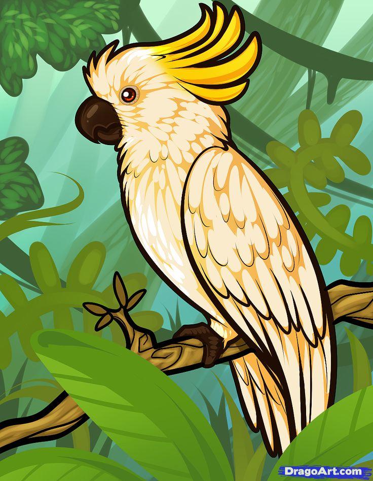 Картинки попугайчиков рисовать