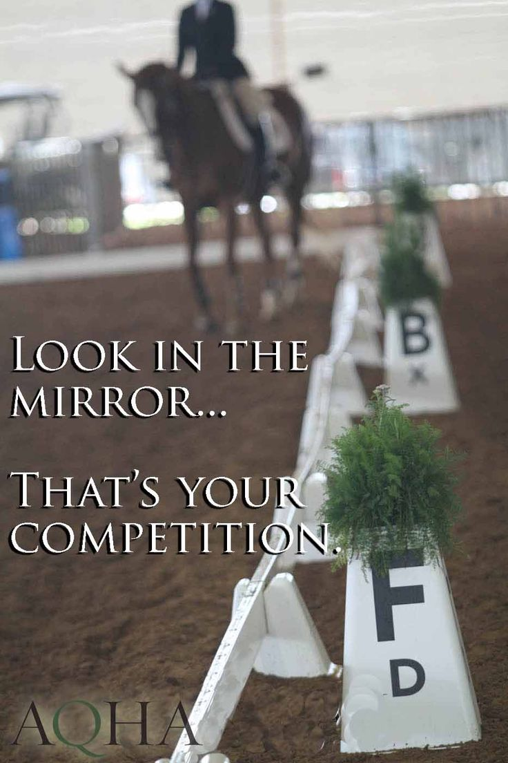Learn more about showing AQHA at http://www.aqha.com/Journal.aspx