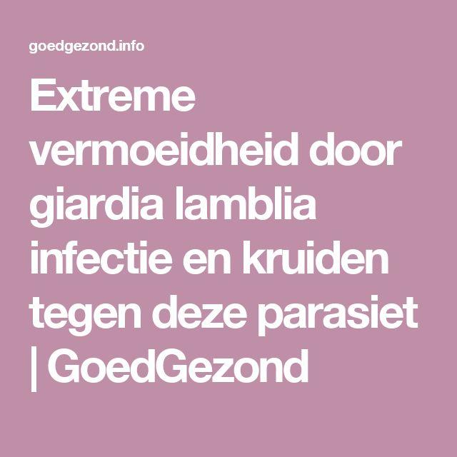 Extreme vermoeidheid door giardia lamblia infectie en kruiden tegen deze parasiet | GoedGezond