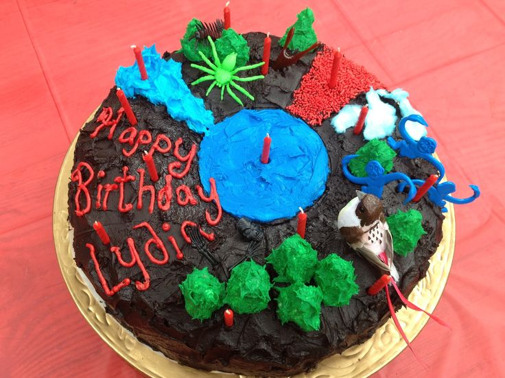 The Hunger Games Birthday Cake