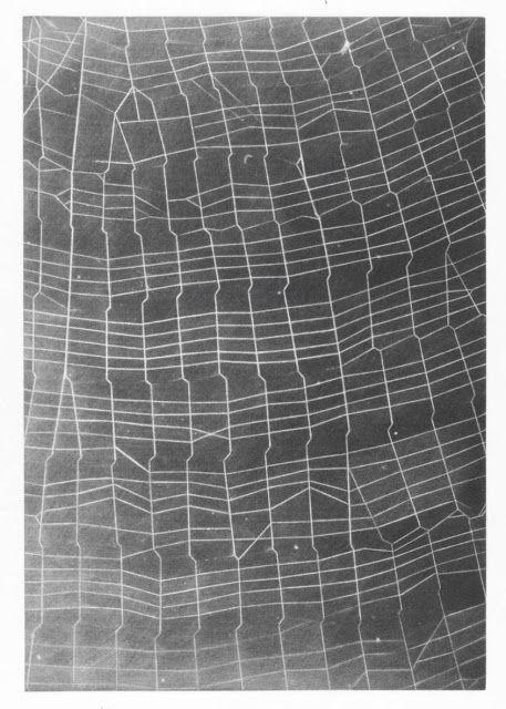 """Vija Celmins, """"Web Ladder"""", 2010. One-plate, one-color mezzotints on Magnani Pescia Satinato bright white paper"""