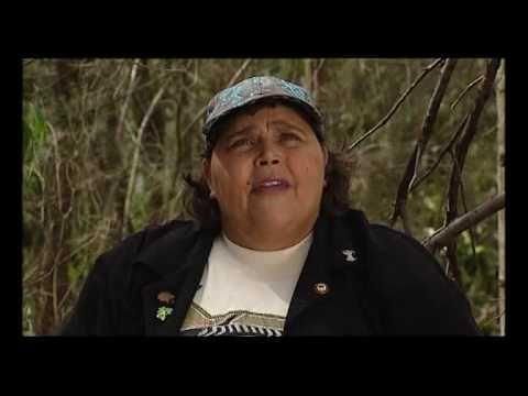 How the birds got their songs - Aboriginal Dreamtime Story