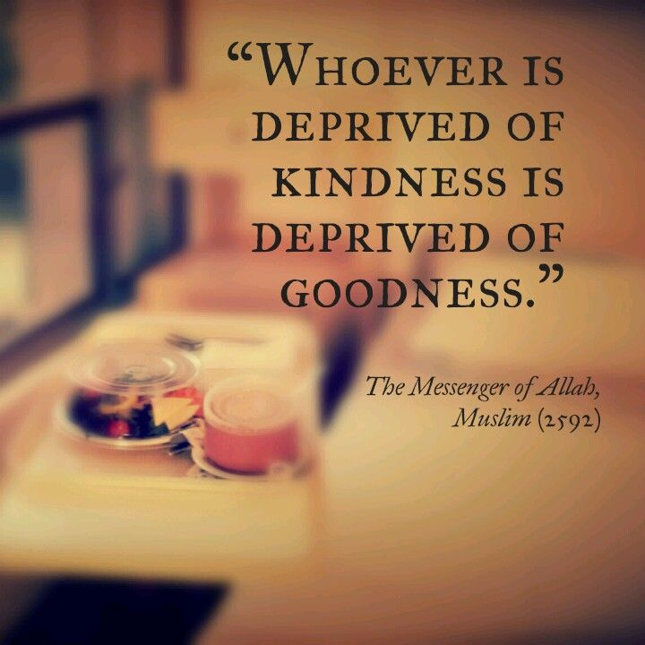 Importance of #kindness (#Islam, #Hadith)