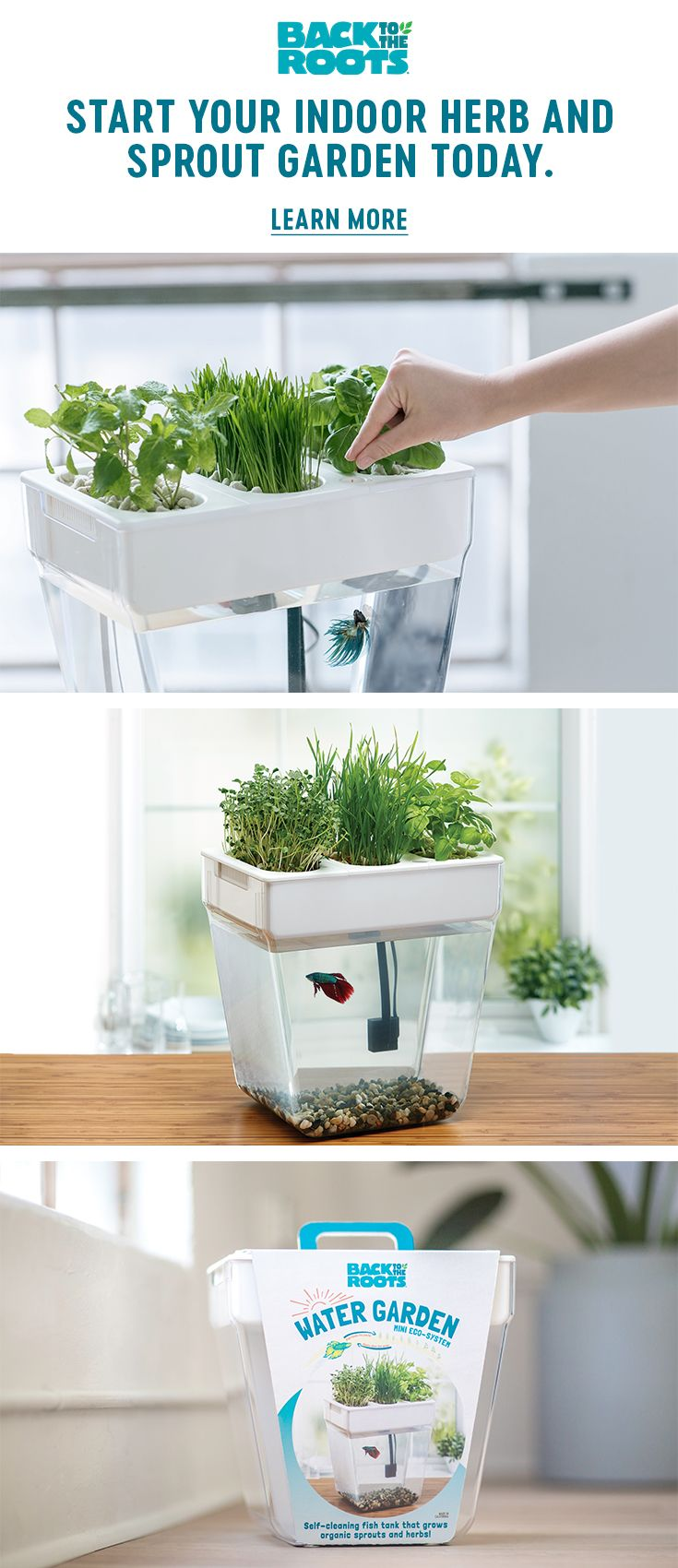 "An award-winning, home aquaponics fish tank that comes with a ""100% Guaranteed to Grow"" promise — great for beginners. It's both self-cleaning and grows organic sprouts and herbs on top. The fish waste fertilizes the plants and the plants clean the water — no water changes required!"