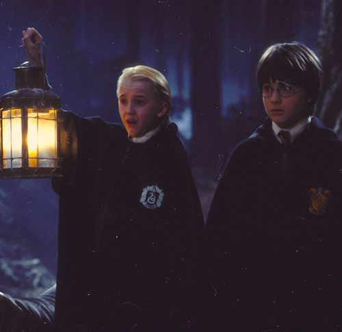 Harry Potter And The Philosopher's Stone - Draco And Harry In The Forbidden Forest
