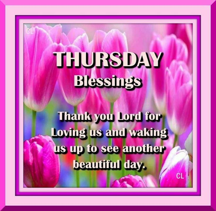 1000 images about thursday blessings on pinterest happy