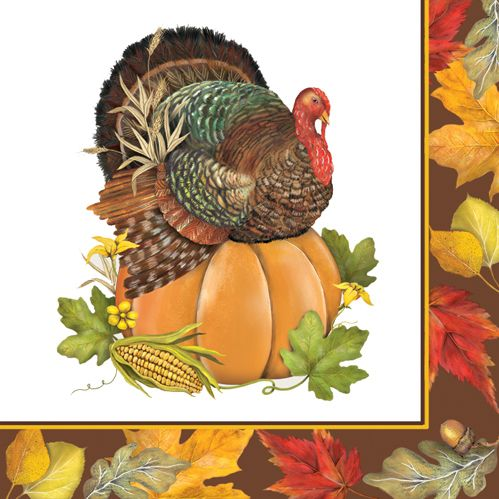 'Turkey Farm' beverage napkin by PPD. Also available in lunch size and paper plate.