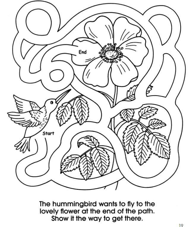 welcome to dover publications busy backyard coloring and activity book - Hummingbird Flower Coloring Pages