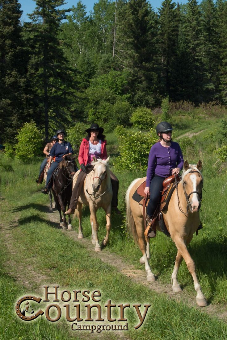 Guided Trail rides!  Time On A Horse Is Time Well Spent!