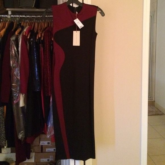 AUTHENTIC Stella McCartney Garnet Dress Purchased from Sak's last season! Size 36 but fits up to a size 38 (4). No spots or stains. Will dry-clean upon request. Tags still available to prove authenticity. Stella McCartney Dresses