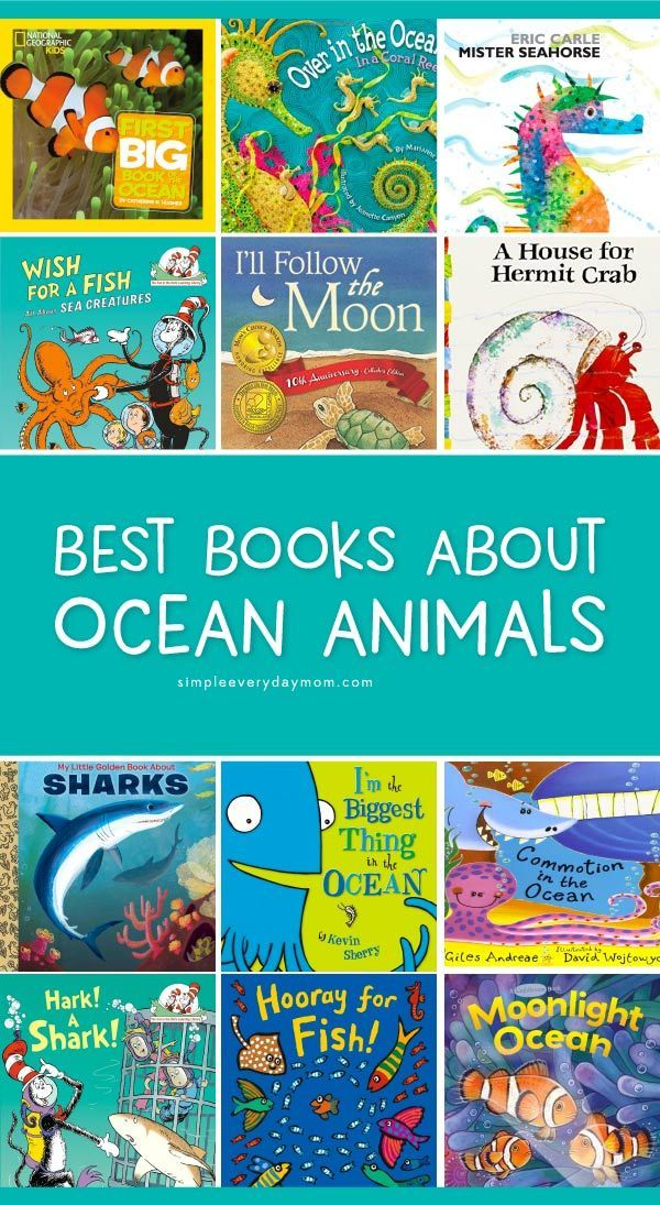 The 13 Best Kids Books About Ocean Animals Ocean Animals For