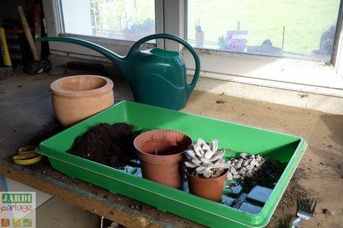 Les 25 meilleures id es de la cat gorie jardin troit sur pinterest jardin sur le c t petits - Rempoter une plante grasse ...